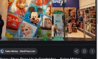 Disney Store Sign Up