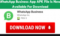 Whatsapp  Business Application | WhatsApp business application download
